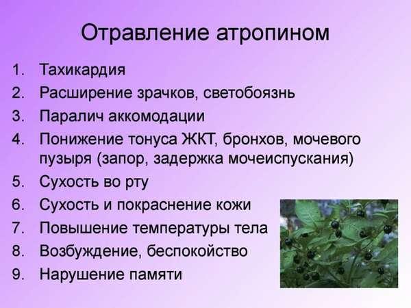 Отравление атропином: симптомы, лечение, первая помощь
