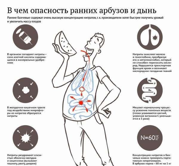 Отравление дыней: симптомы, причины, лечение