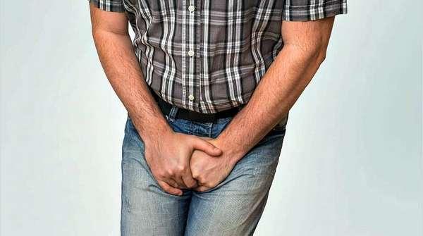 Дурнишник (золотая колючка, зопник)- лечебные свойства и противопоказания - Народная медицина