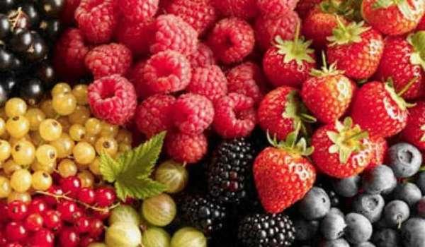 Какие бывают ягоды: названия и фото. Целебные свойства ягод