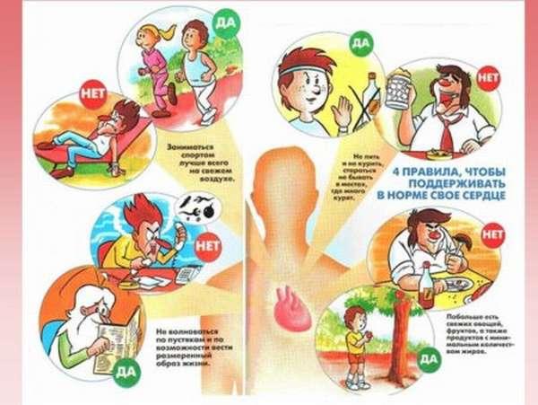 Методы профилактики сердечно-сосудистых заболеваний и правила здорового образа жизни