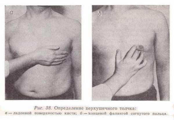 Показания к пальпации сердца, последовательность проведения процедуры у взрослых и детей