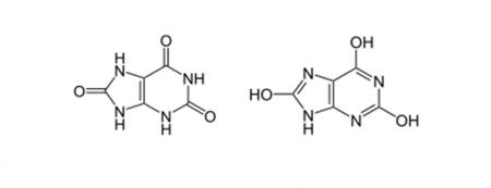 Показания к проведению анализа на мочевую кислоту, что означают показатели