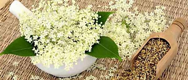 Цветы таволги