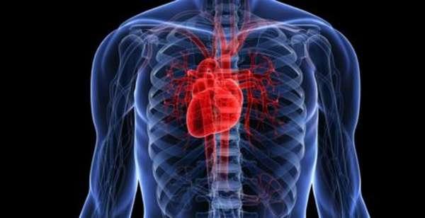 Что такое кардиогенный шок, как оказать неотложную помощь и какой должен быть алгоритм действий?