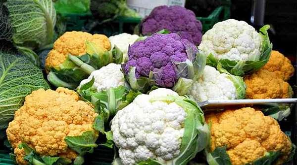 Цветная капуста разных цветов, желтая, фиолетовая, белая