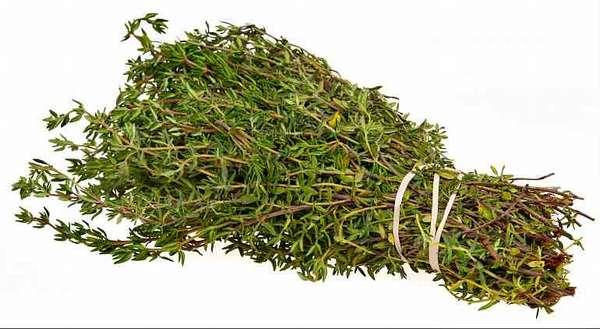 Трава чабреца сушеная
