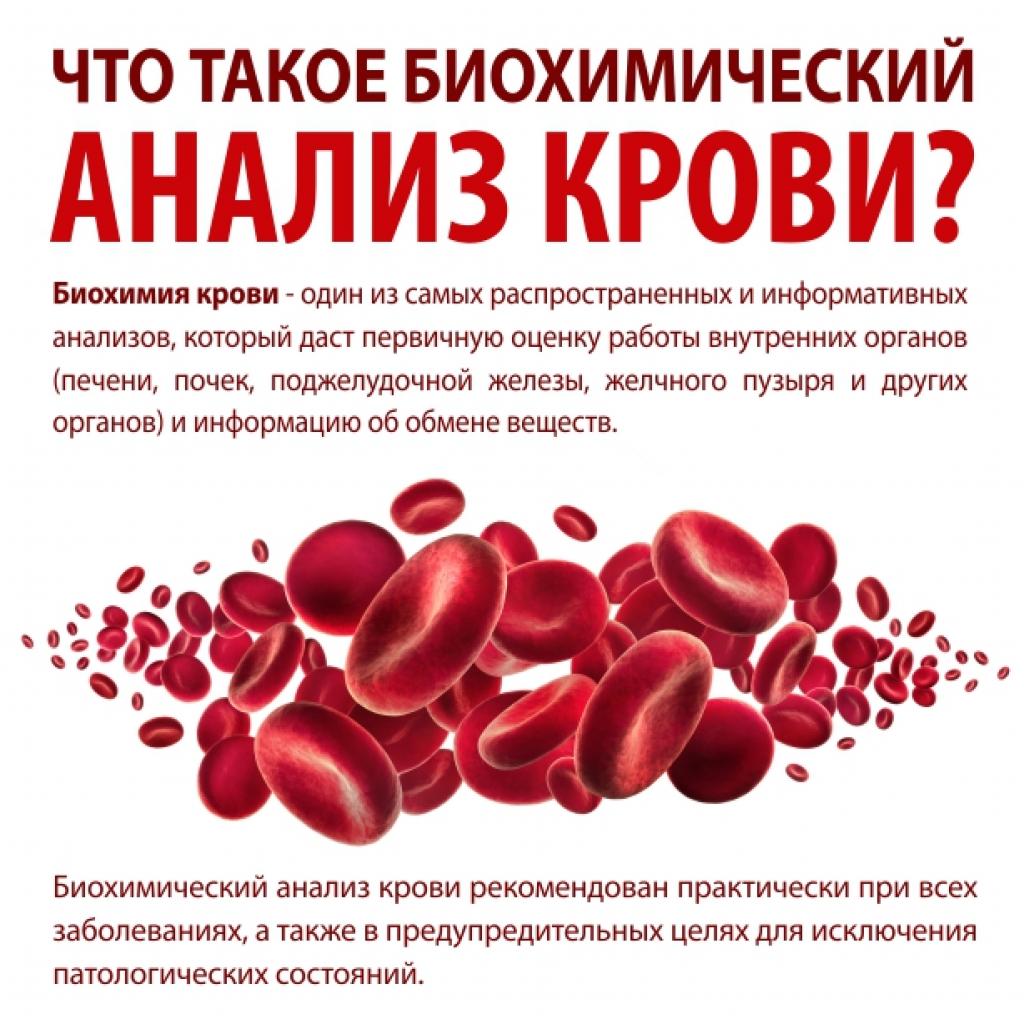 Что даёт биохимия и как к ней подготовиться